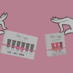 GIFTED DR.LIPP 6 PACK STOCKING FILLER